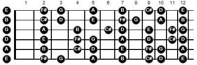 wayne krantz guitar